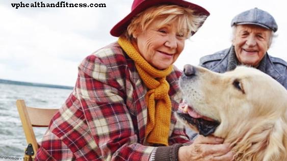 informations - Caresser votre animal de compagnie est bon pour votre santé