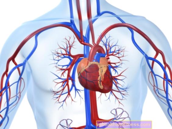 Angiolog - hvad gør angiologi?